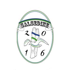 Logo Salsedine Calcio